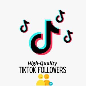 Product-TikTok Followers