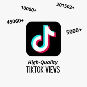Product-TikTok Views